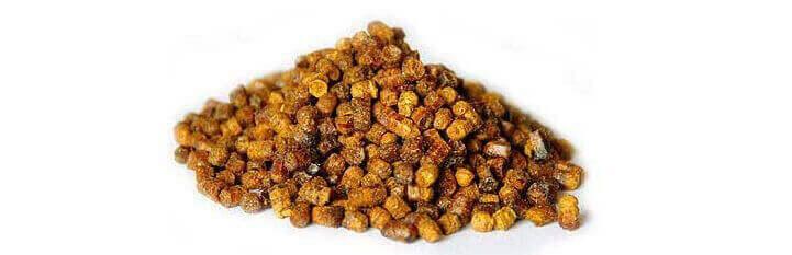 Фото пчелиной перги