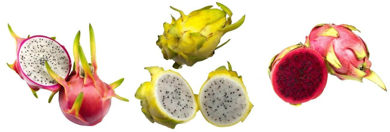 Питахайя - виды фрукта фото, его польза и свойства