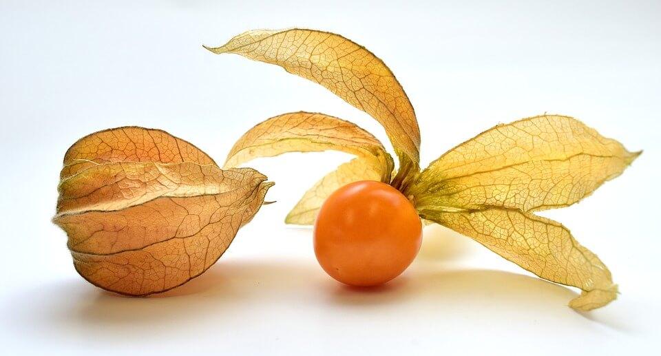 Физалис в коробке - фрукт