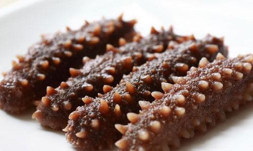 Трепанг или морской огурец - как выглядит