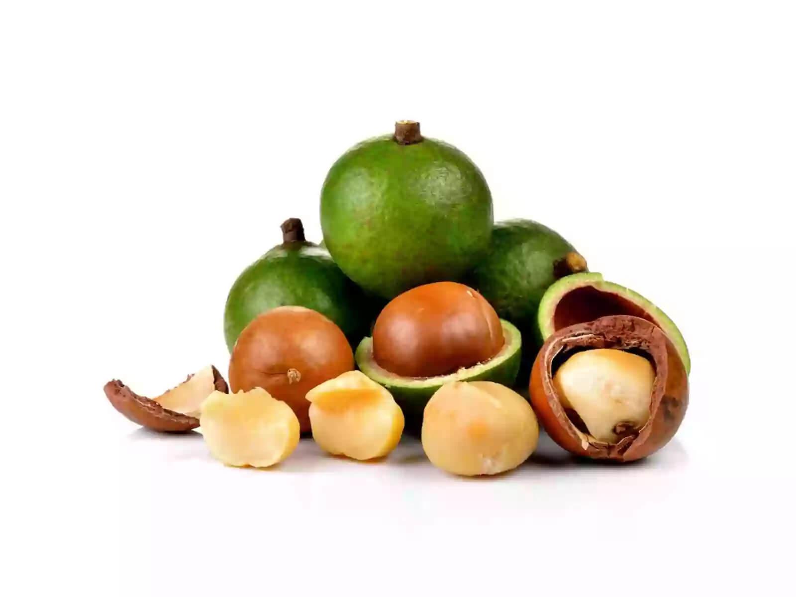 Орех макадамия - на фото все эпаты роста