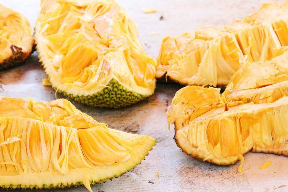 Плод хлебного дерева - джекфрут